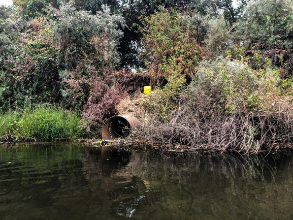 City of Ripon Outfall Repair